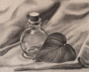 Glass and leaf Study