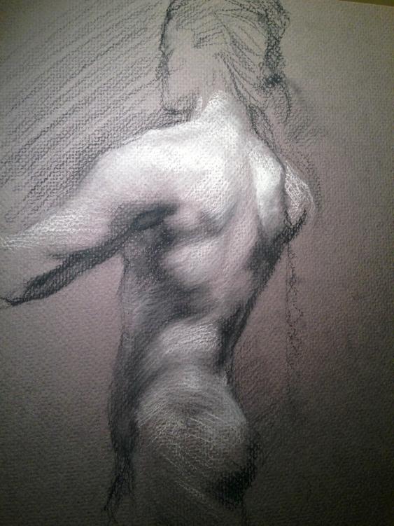 Study of a male torso